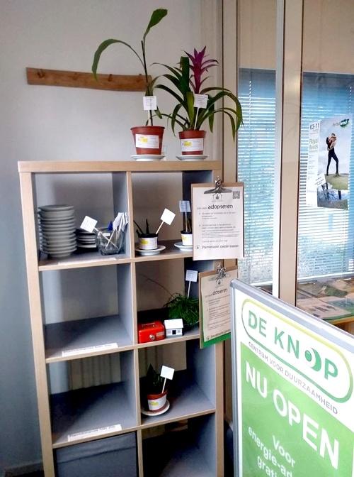 plantenkast, plant adopteren, plantenasiel