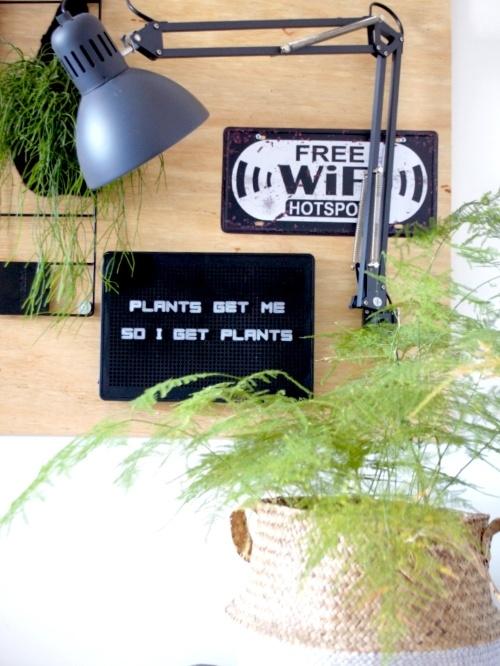 letterbord, letterboard, letterbord quotes, quotes, plantenquotes, plantquotes, plants, planten, kamerplanten