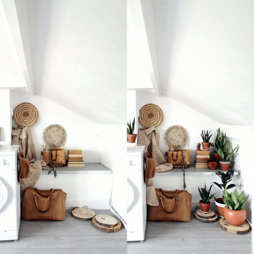 GoJungle, voor en na foto, wasruimte, plantstyling, plantstylist, groeninhuis