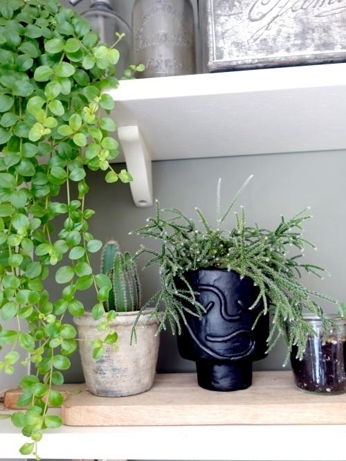 Abstract face pot, face planter, gezichtspot, plantenpot, diy, kleien