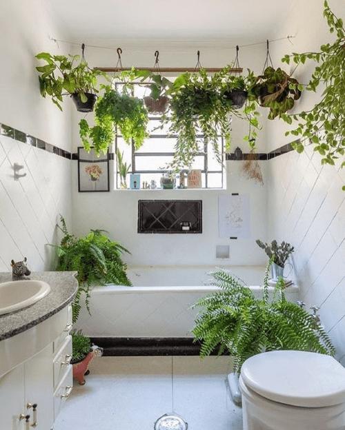 plantstyling, badkamer, badkamerinspiratie, badkamerstyling, planten, kamerplanten, hangplanten, badkamerplanten